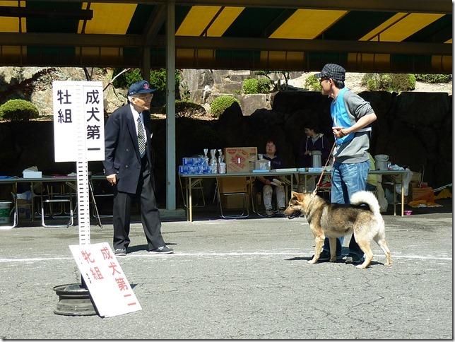 201604四国支部展02-16