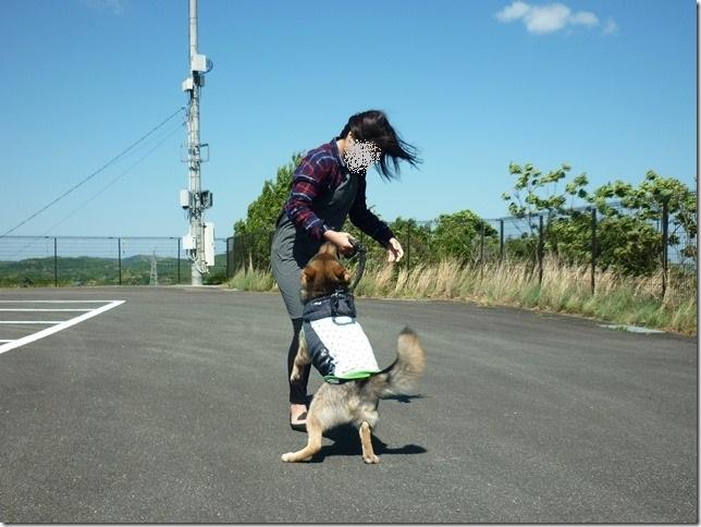 201604母の日志摩-10
