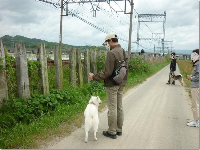 201605GW電車散歩-02