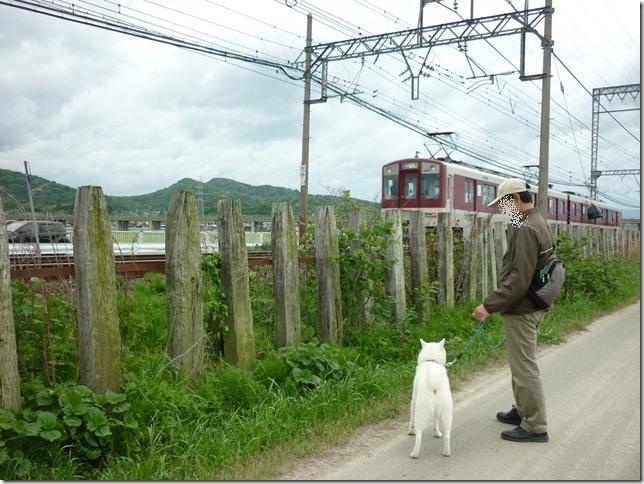 201605GW電車散歩-04
