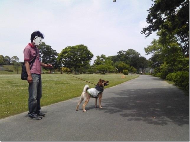 201605公園散歩と田丸城址散策-01