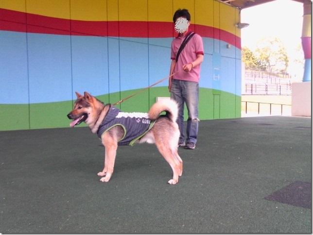 201605公園散歩と田丸城址散策-04