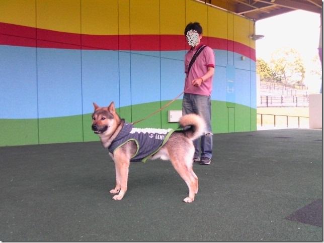 201605公園散歩と田丸城址散策-05