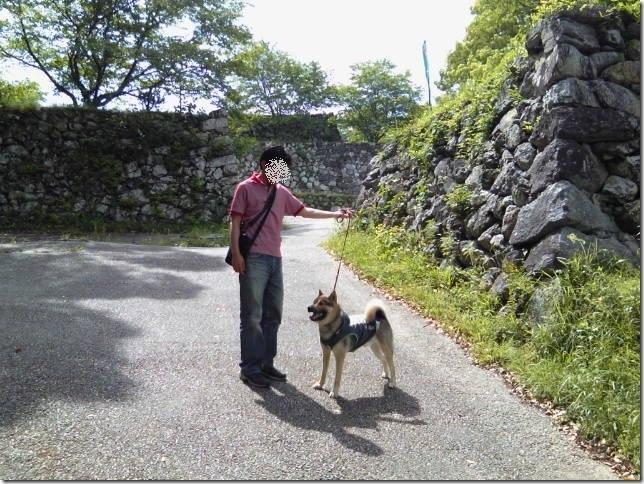 201605公園散歩と田丸城址散策-14