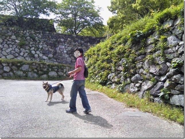 201605公園散歩と田丸城址散策-15