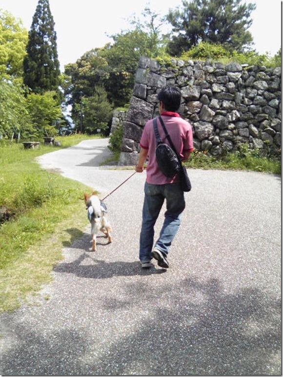 201605公園散歩と田丸城址散策-16