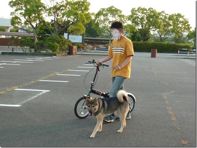 201605自転車-01