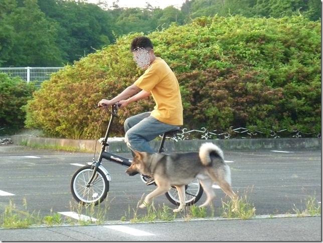 201605自転車-03