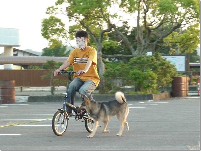 201605自転車-05