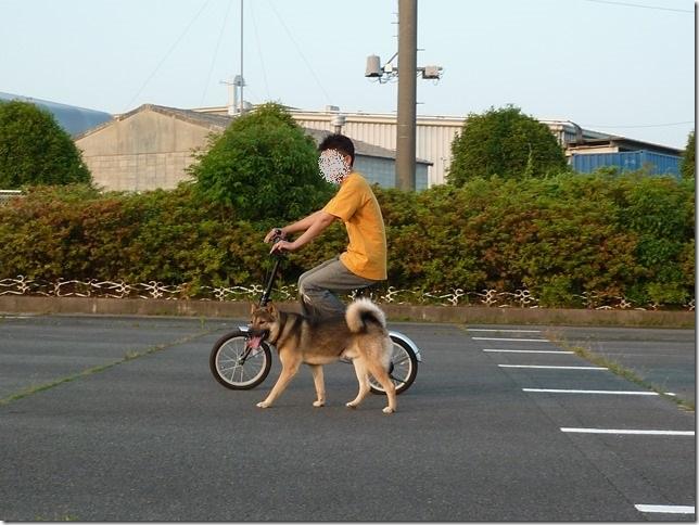 201605自転車-06