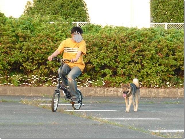 201605自転車-08