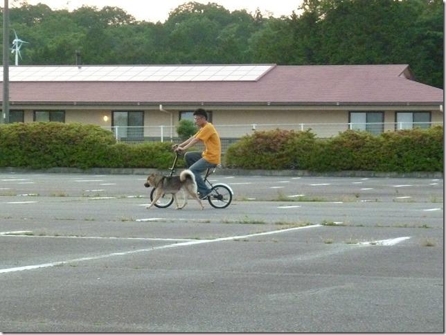 201605自転車-21