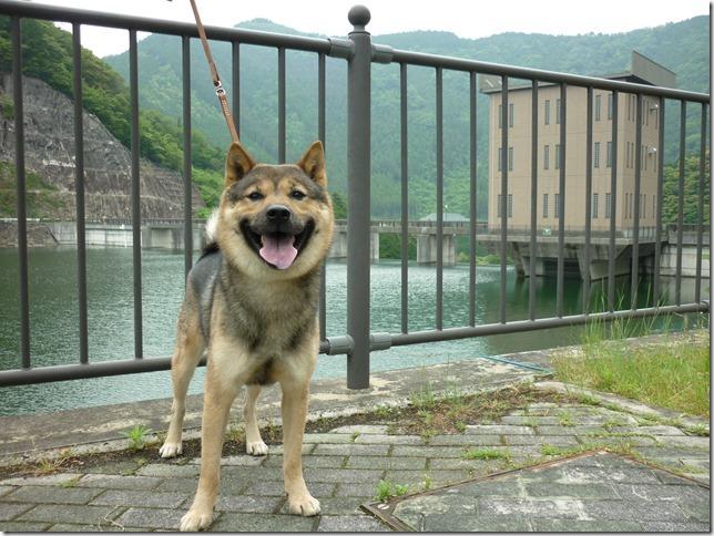 201605大島ダム-04