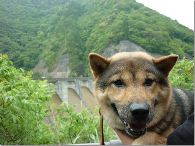 201605大島ダム-12
