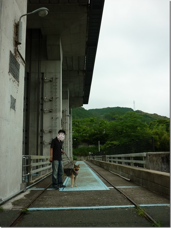 201605大野頭首工-14