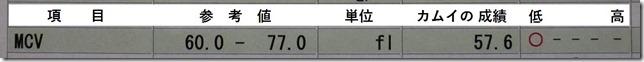 201605健診血液検査07