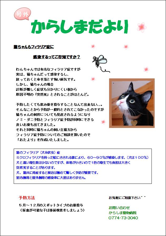 猫フィラリア変換画像