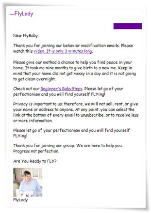 フライレディの最初のメール