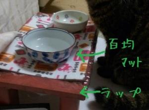 IMG_0429 - コピー (2)