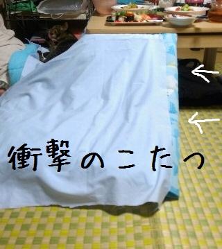 IMG_0547 - コピー