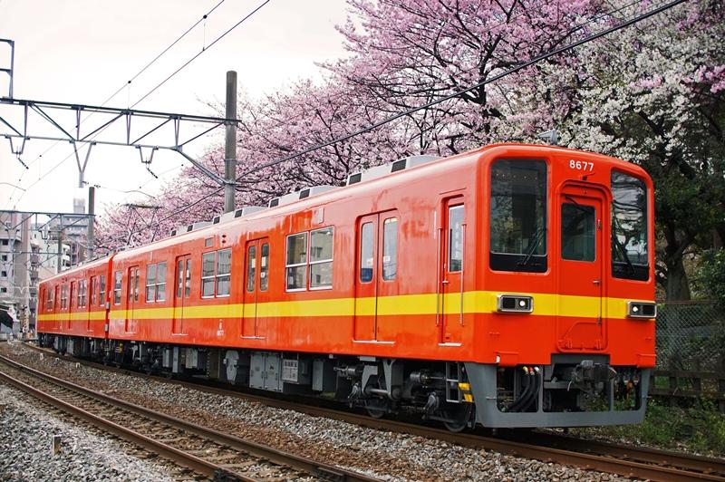 2016年4月1日 東あずま~小村井にて