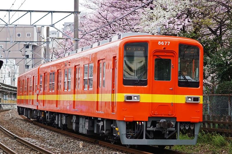 2016年4月1日 東あずま~小村井にて (2)