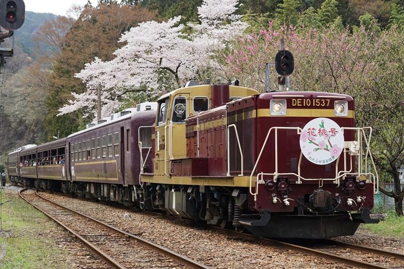 2016年4月10日 神戸にて (1)