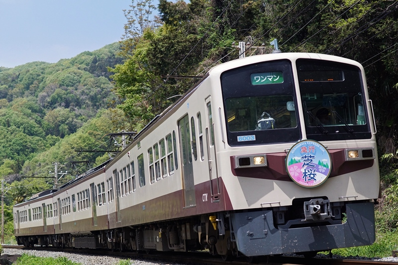 2016年4月23日 樋口~波久礼にて