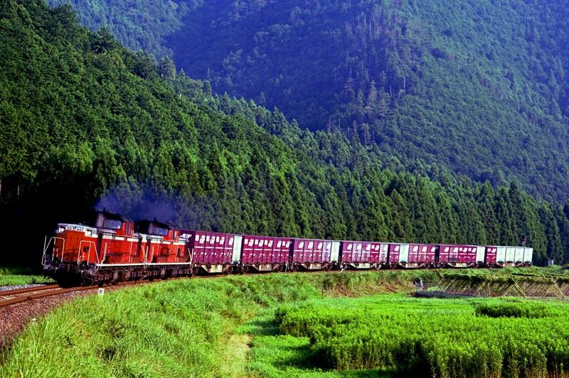 2002年7月22日 大内山~梅ヶ谷にて