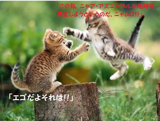 猫 ガンダム戦闘