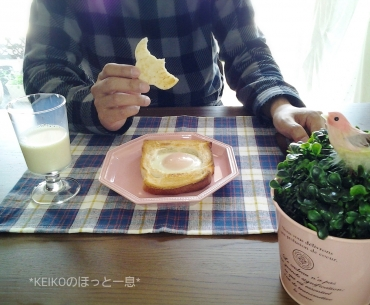 夫用ホールインザエッグパン2