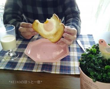 夫用ホールインザエッグパン3