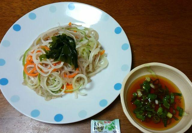 野菜冷やうどん2