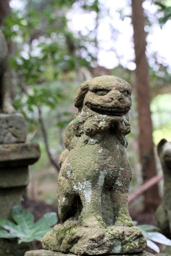 巌倉寺の狛ワンコ