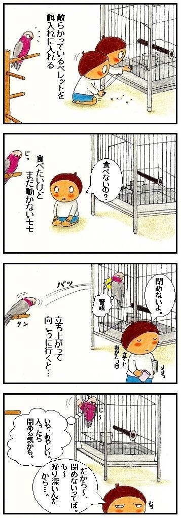 疑り深い鳥