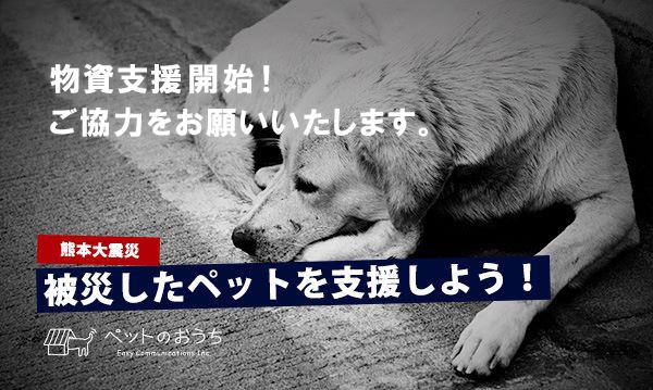 kumamoto2016.jpg