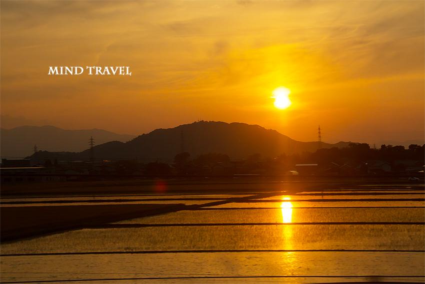 新幹線より水田を望む