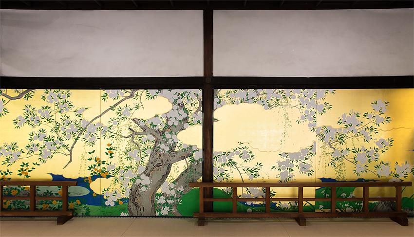 智積院障壁画 桜図