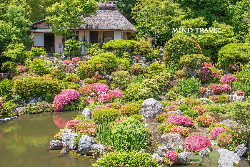等持院 芙蓉池と庭園 皐月