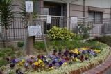 神戸市営名谷駅東住宅 住民の手作り花壇