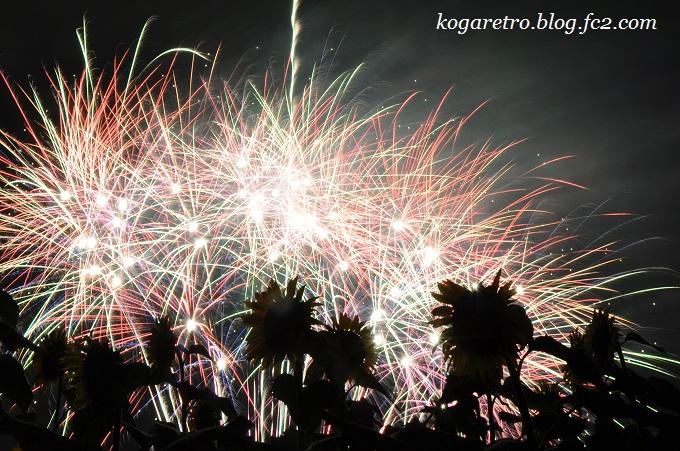 2016野木の花火とファイアー