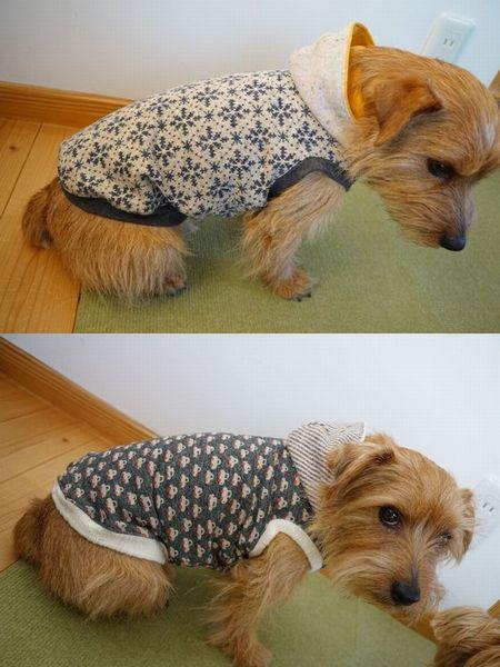 犬服 (5)