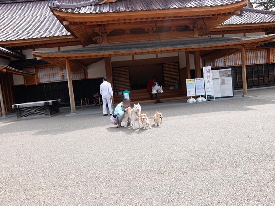 160508 北海道13