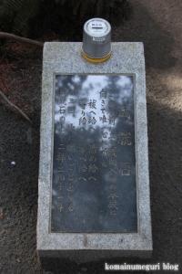 浅間神社(笛吹市一宮町一ノ宮)50