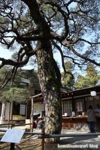 浅間神社(笛吹市一宮町一ノ宮)61