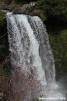 白糸の滝9