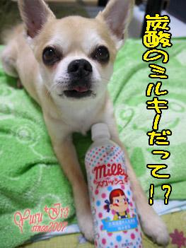 2016yuruiro_0616_k_001
