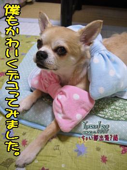 yuruiro2016_0701_03_k__005