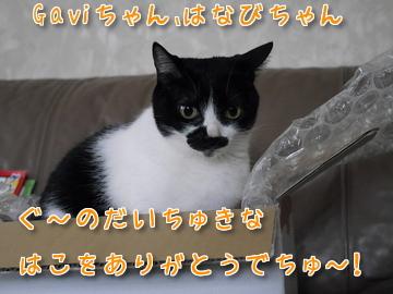 Gaviちゃん、ありがとうでちゅ~♪7
