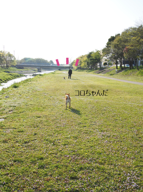 20150512-001.png